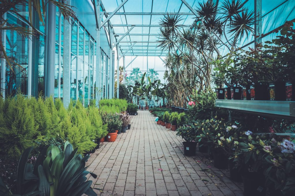 Jardim Campo 3